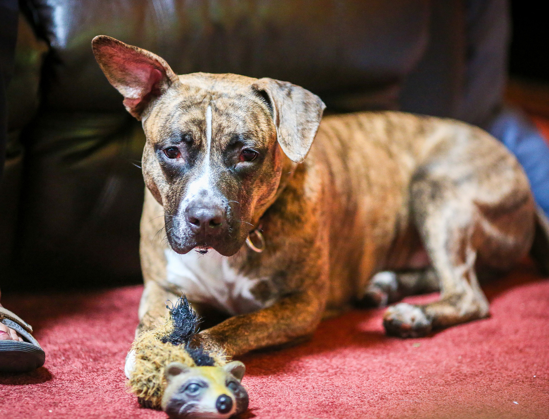 ChristmasEveDay-157